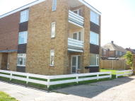 Beresford Gardens Flat to rent