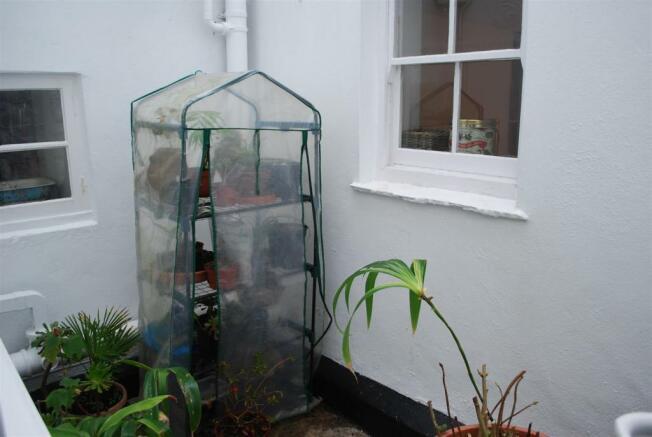 Enclosed Yard.JPG