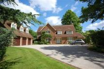 4 bed house to rent in Ware Park, Herts