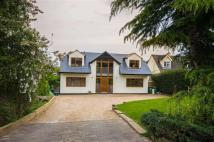 Detached property for sale in Baas Lane, Broxbourne...