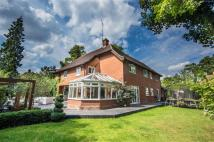 5 bed Detached property in Rockleigh, Hertford...