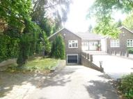 2 bedroom Detached Bungalow to rent in 21a Hendon Avenue...