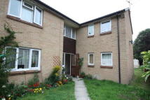 Flat to rent in Colbourne Close, Pewsham