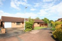 Detached Bungalow in Pear Tree Close, Hull