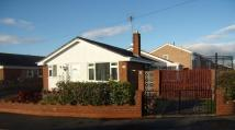 3 bedroom Detached Bungalow in Halkyn View...