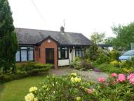4 bedroom Detached Bungalow in Henblas Road, Rhostyllen...