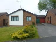 2 bed Detached Bungalow for sale in Meadow Rise, Llay...