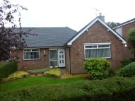 2 bed Semi-Detached Bungalow in Annefield Park, Gresford...