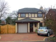 Detached house in The Beeches, Hope, LL12