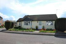 Detached Bungalow for sale in BALDOCK, Hertfordshire