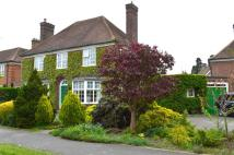 4 bedroom Detached home for sale in Elmwood...