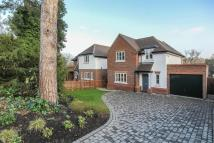 3 bed new home in 11 Wendover Lodge...