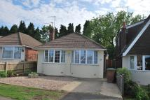 Detached Bungalow in Overstone   Northampton ...