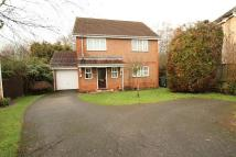 4 bed Detached home to rent in Knaphill, Woking