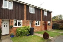 Oakfield Terraced property to rent