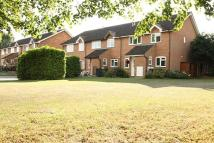 2 bed Terraced house to rent in Bisley, Woking