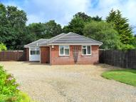 3 bed Detached Bungalow to rent in New Milton