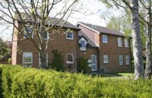 Bankhill Drive Studio flat to rent
