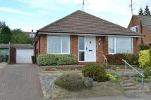 3 bed Detached Bungalow for sale in Manton Road, HITCHIN...