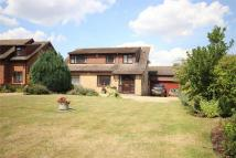 4 bedroom Detached property in Ampthill Road, SILSOE