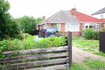 Semi-Detached Bungalow for sale in Pelham Road, Immingham