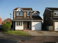 Detached house for sale in Millhouse Rise, Immingham