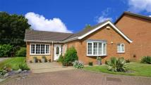 4 bed Bungalow in Coltsfoot Drive, Waltham