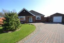 Detached Bungalow for sale in Arran Close, Immingham