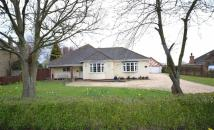 Detached Bungalow for sale in Main Road, Brigsley