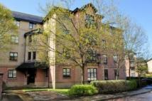 Flat to rent in 12/8 Russell Gardens