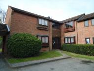 Studio flat to rent in Chinook, COLCHESTER...