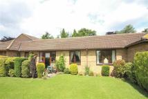 Semi-Detached Bungalow for sale in Pinewood Drive...