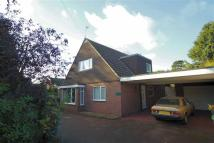 Detached Bungalow for sale in Westfield Drive...
