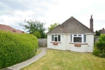 Bungalow for sale in Coppice Close...