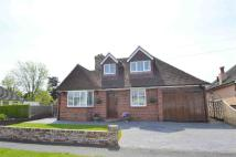 4 bed home for sale in Sunstar Lane, POLEGATE...