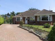 Detached Bungalow for sale in Green Lane, Bradwell...