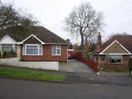 Semi-Detached Bungalow to rent in McKinnell Crescent...