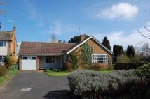 Detached Bungalow for sale in Barby Lane, RUGBY...