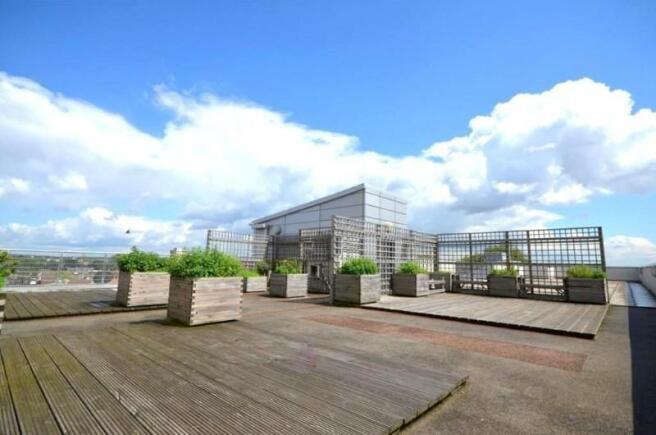 Communal terrace: