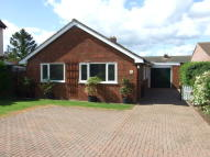 Detached Bungalow to rent in Theydon Avenue...