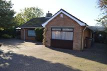 3 bed Detached Bungalow in Heighington Road, CANWICK