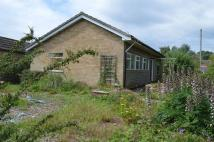 3 bed Detached Bungalow for sale in Cherry Tree Lane...