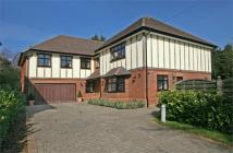 The Drive Detached house for sale