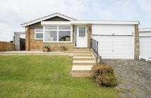 2 bed Detached Bungalow in Cuffley Village