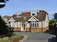 4 bedroom Detached Bungalow in Bedhampton