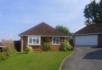 Detached Bungalow in HYTHE