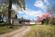5 bed Detached house for sale in WEST END