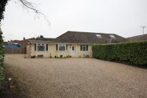 3 bedroom Semi-Detached Bungalow for sale in 1 Honeymeade...
