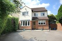 4 bed Detached house in September House...