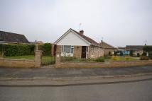 2 bed Detached Bungalow in Dersingham
